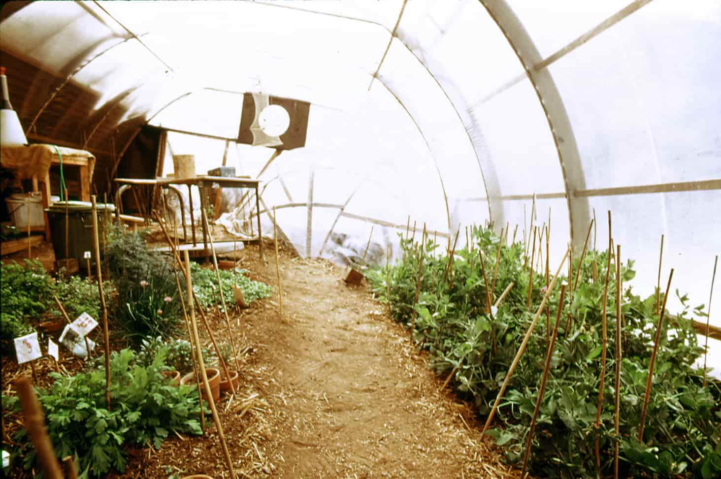 Greenhouse Solar Heat